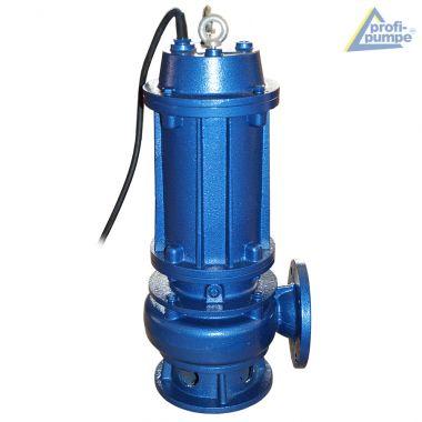 Pumpe BAU-Star 2200-4