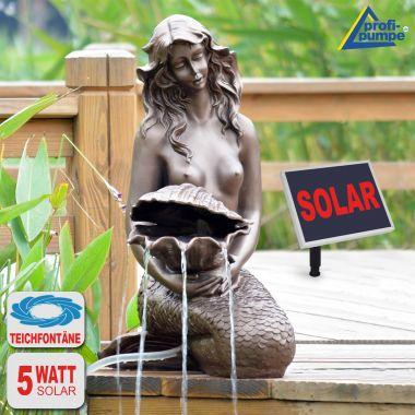 Teichpumpen-Set Solar
