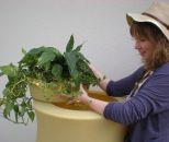 AMPHORE MAJA 300l terra-kotta inkl. Füllstandsschlauch und Fallrohrfilter T33 grau